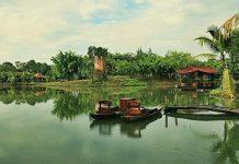 Bò Cạp Vàng: Địa điểm du lịch thu hút du khách tại Đồng Nai